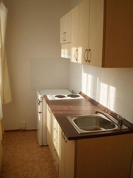 Levné ubytování v Praze - Apartmán 406 - kuchyňka